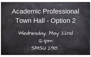Academic Professional Town Hall Meeting - Option 2
